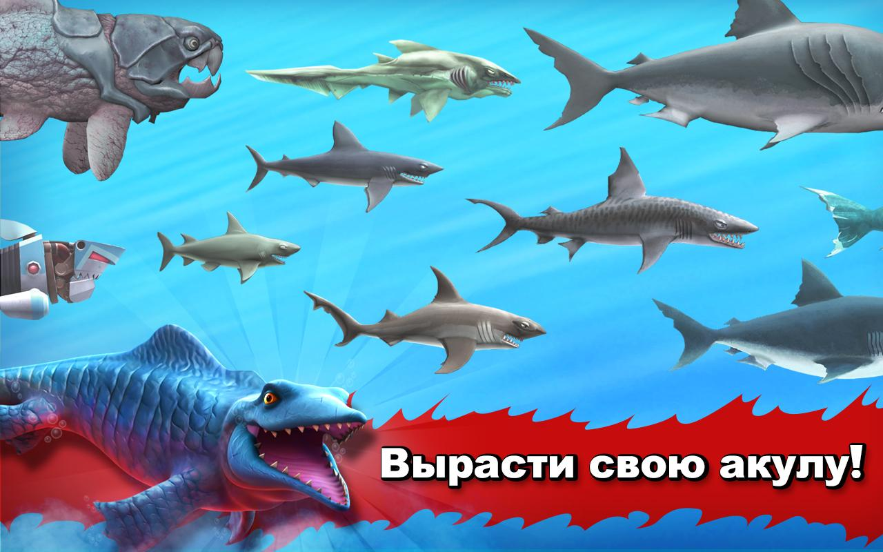 На фото все акулы в Hungry Shark
